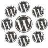 Hoe een WordPress multisite installatie verhuizen?