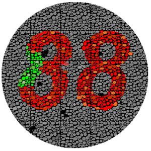Het getal 38 wordt ook gebruikt om kleurenblindheid te testen.